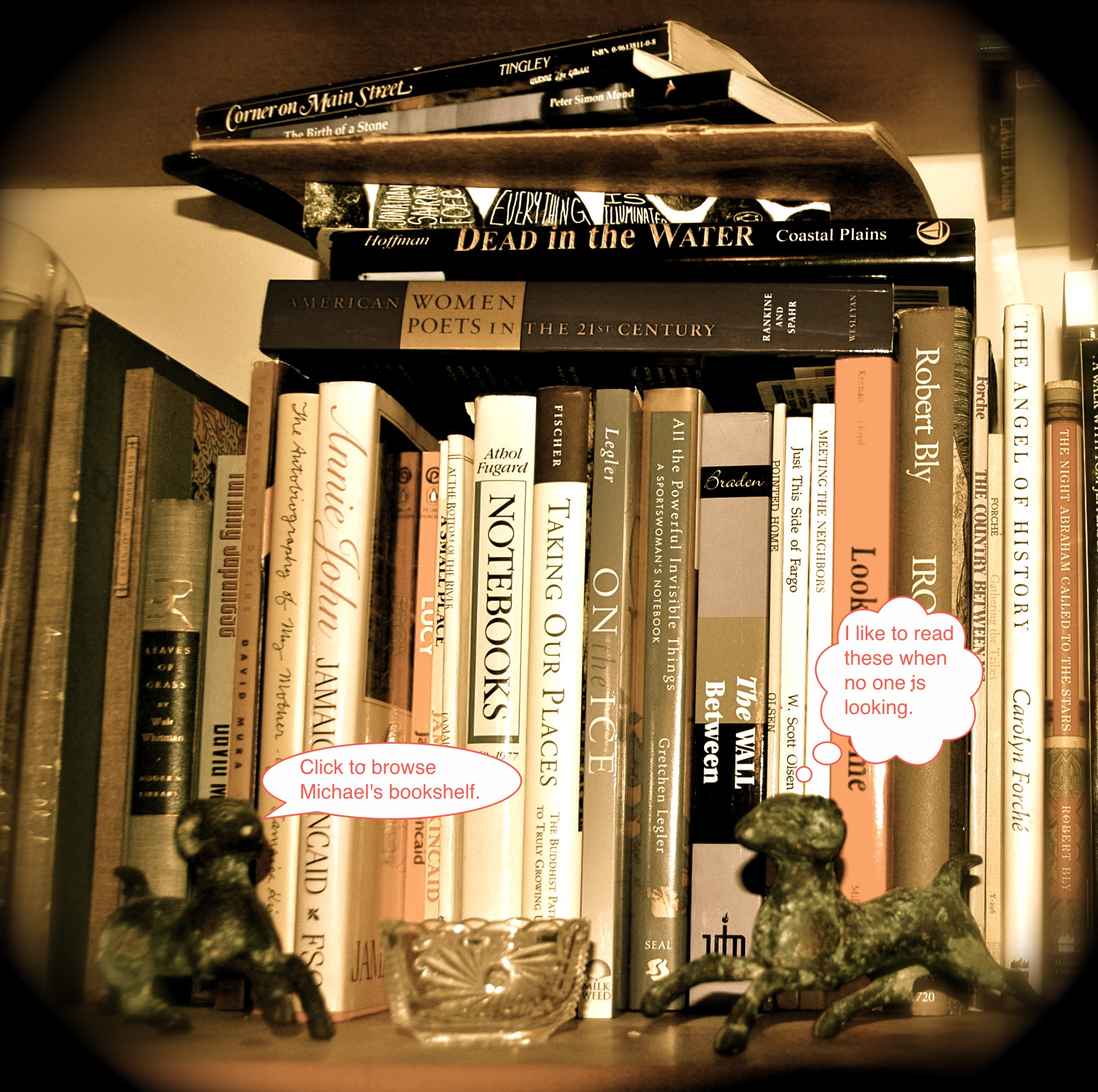 Image of Michael Dickel's bookshelf
