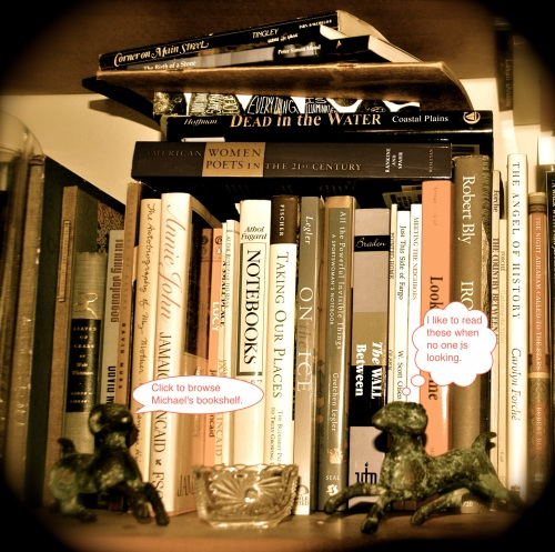 Image of Michael Dickel's bookshelf