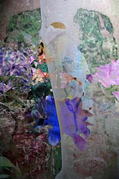 Garden of Mind ©2012