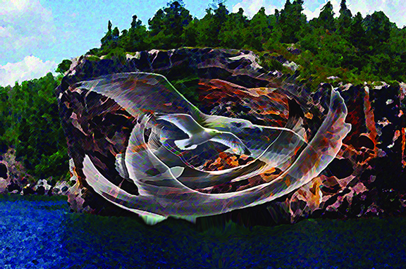 Digital artwork by Michael Dickel of Sea Gulls flying by Lake Superior.