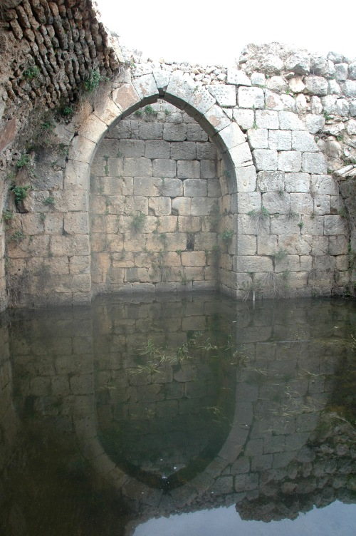 Reflected blocked archway, Nimrod's Castle, Israel. Photo, ©2009 Michael Dickel