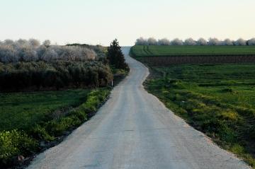 Road in Israel. Photo, ©2008 Michael Dickel