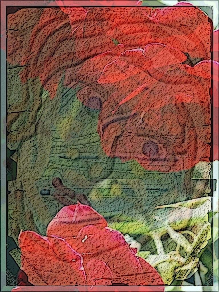 20130616-191854.jpg