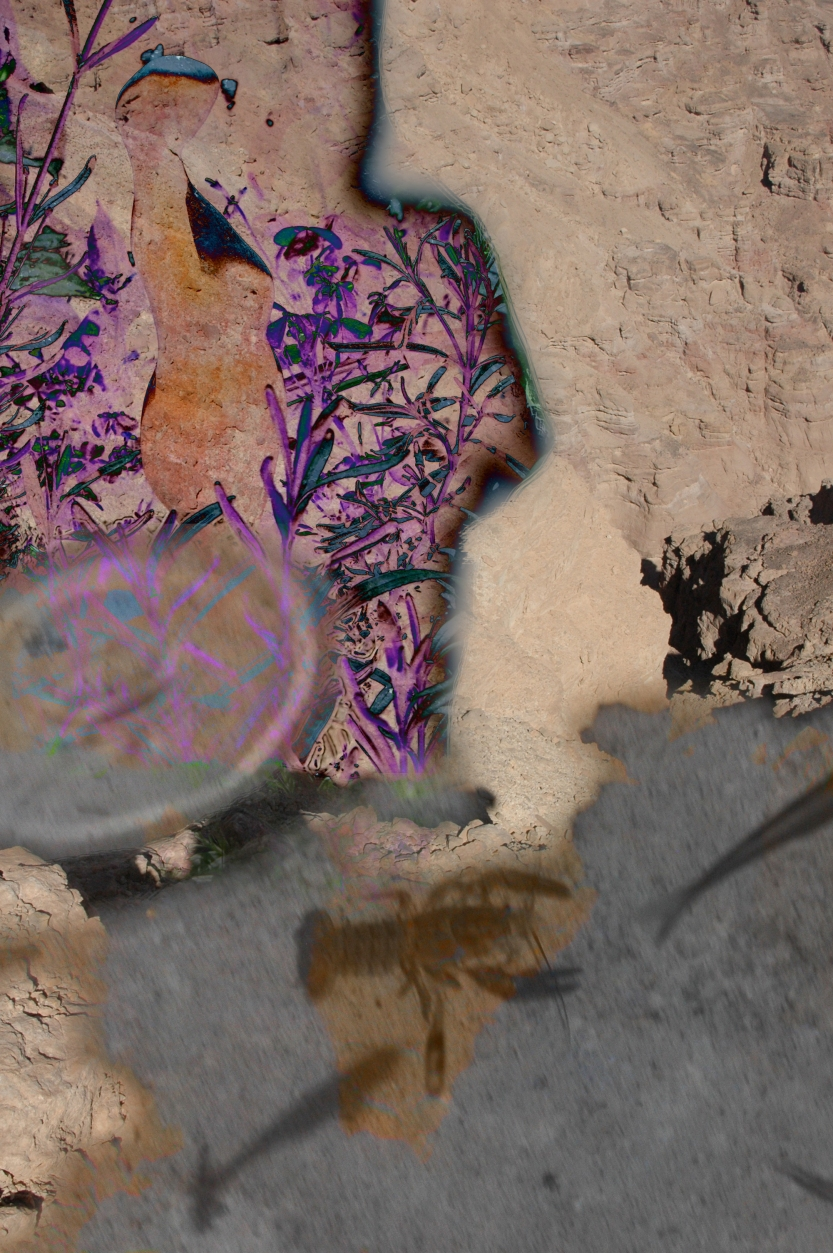 Lilith, digital photo montage ©2013 Michael Dickel