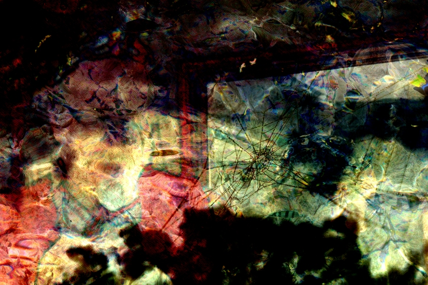 Narcissism poetics mylar Digital art from photos ©2015 Michael Dickel