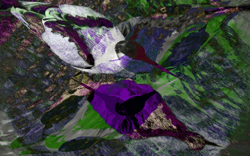Waterbird Purple digital landscape from photos ©2017 Michael Dickel